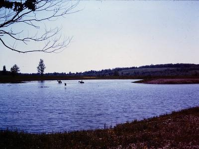 Cook Park Pond 1963